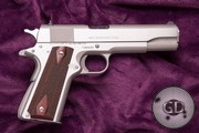 Colt 1911 stainless