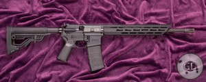 Mossberg MMR Security Rifle