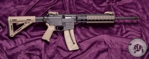 Smith&Wesson M&P 15-22 MOE SL Black